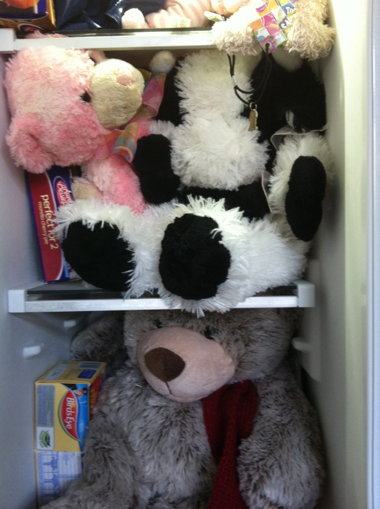 """teddies in the freezer"""