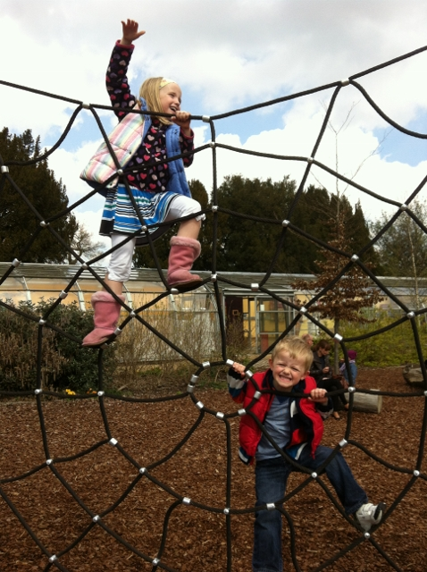 """spiders web climbing frame"""