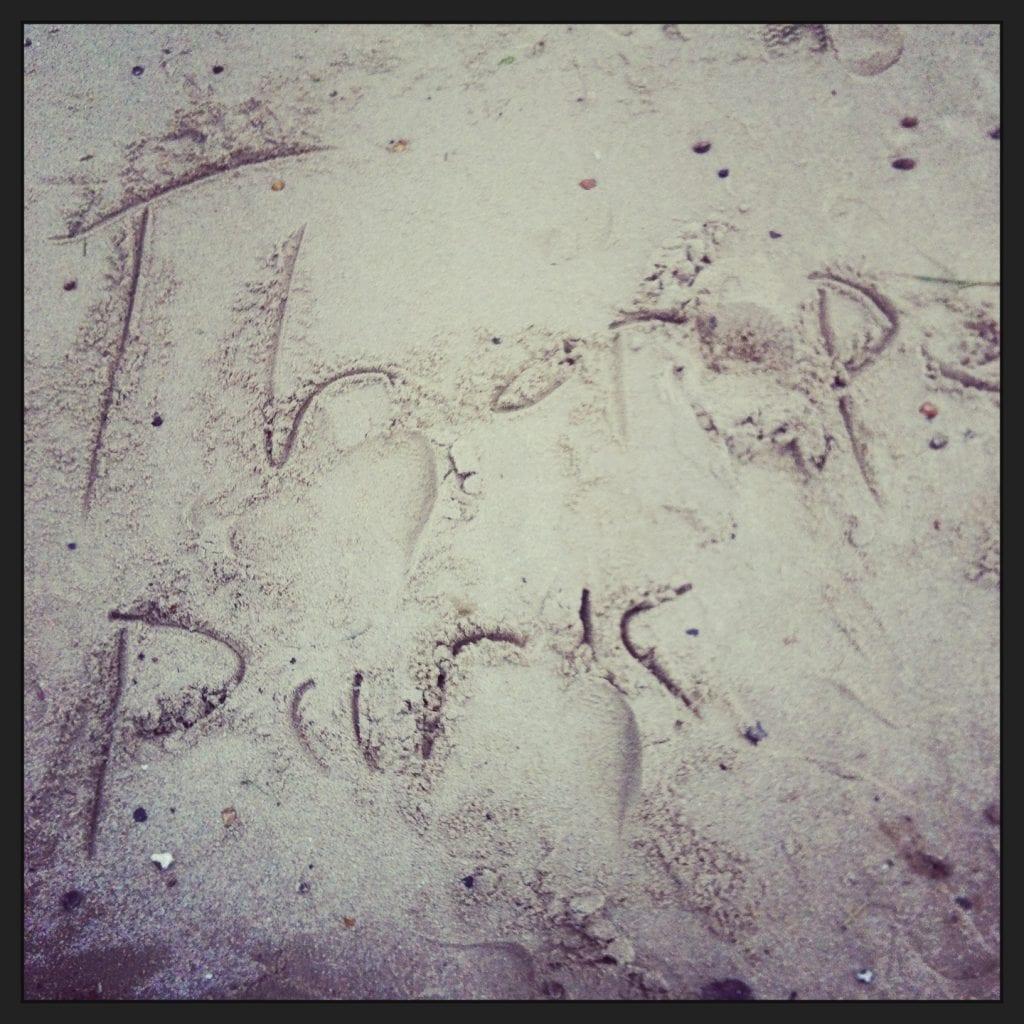 """""""Thorpe Park"""""""