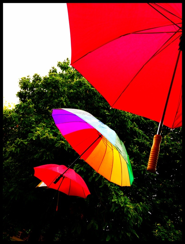 """umbrellas in the sun"""