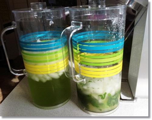 Sodastream Cocktails Mojito