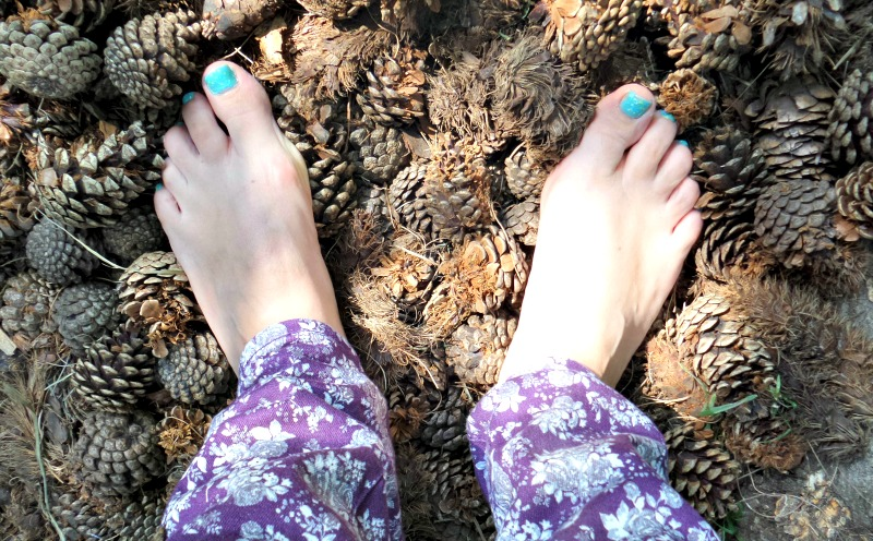 More family fun at Kew Gardens - the Barefoot Walk