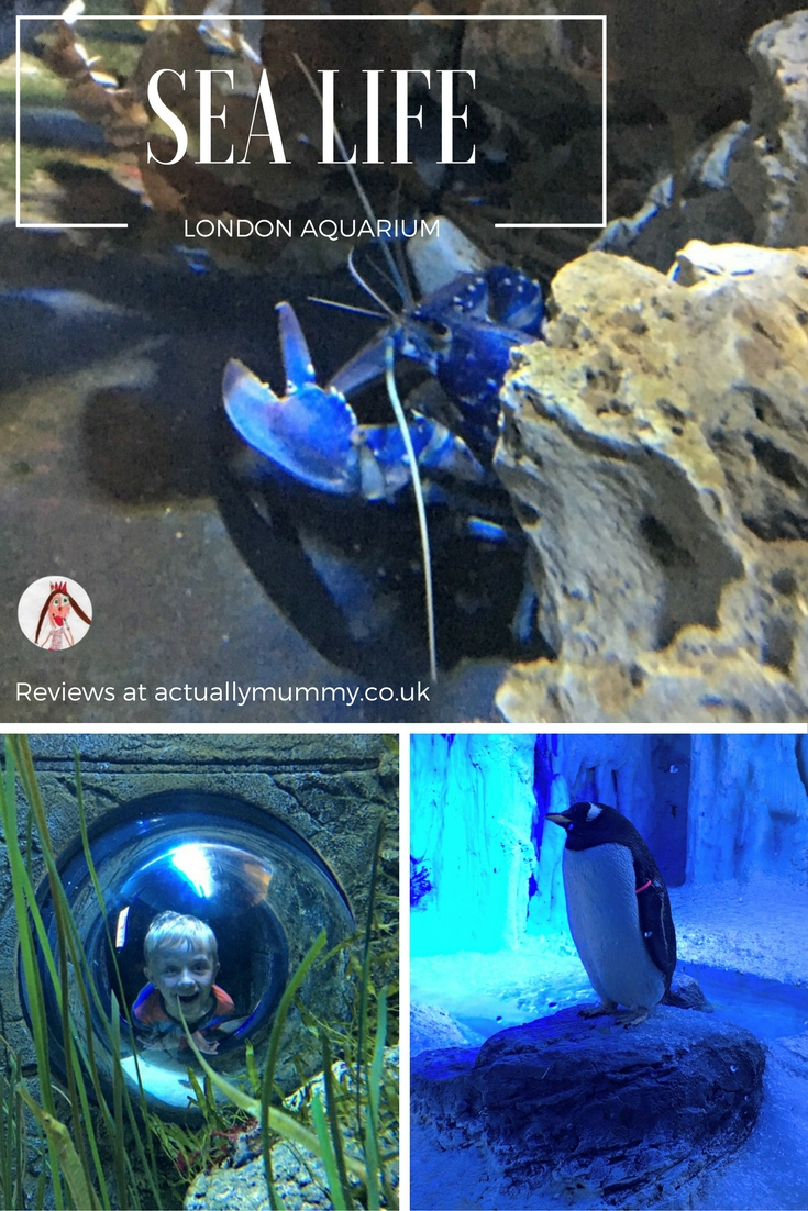 A day out at the London Aquarium is a must during the school holidays. There's a huge shark tank, you can get up close with the rays, and now there are even penguins in the heart of London!