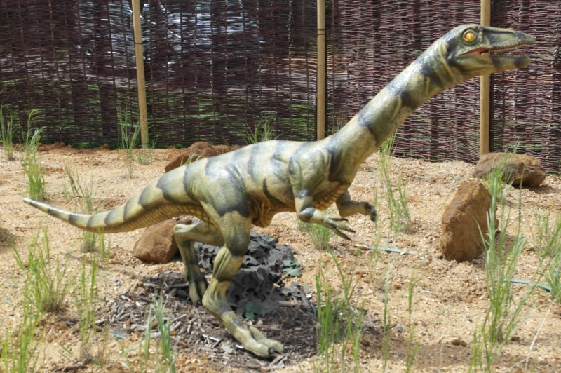 The dinosaur enclosure at Whipsnade zoo is the most realistic dino feature I've seen
