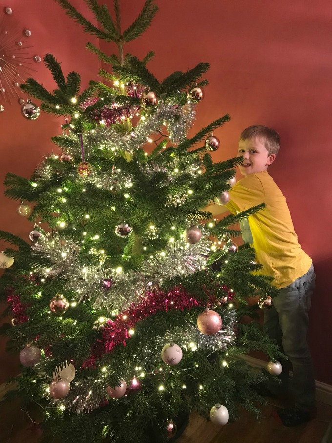Find your perfect Christmas tree with Pines and Needles