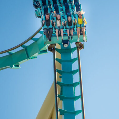 Family Travel: Why SeaWorld Orlando should be on your Florida Itinerary