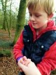 Adventure playground at Aldenham