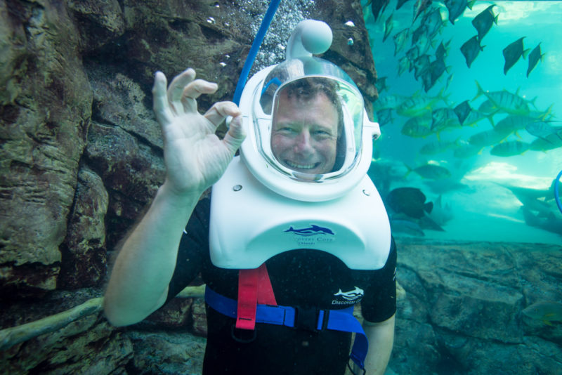 Family Travel: 5 Things you wouldn't expect at Discovery Cove (Review)